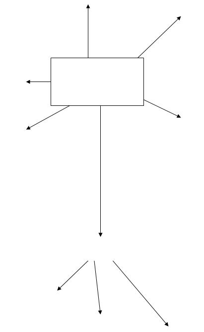 Voorbeeld Woordspin