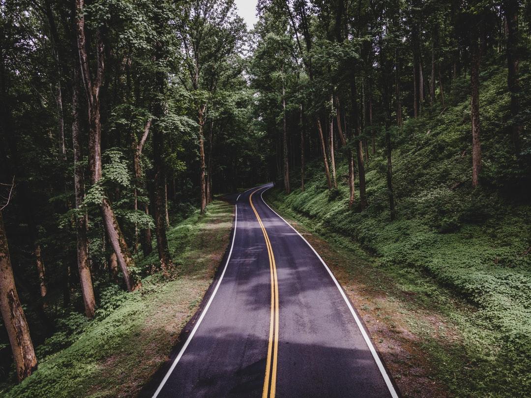 Het leven gaat over het volgen van jouw pad, jouw waarheid