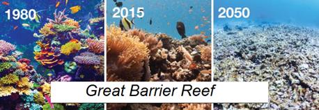 Great Barrier Reef, hoe het er uit zag, ziet en er uit komt te zien