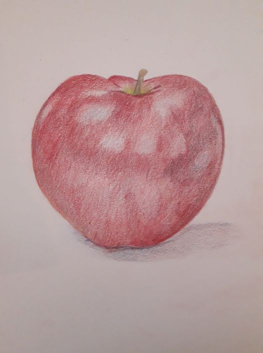 Eigen werk: Appel in kleurpotlood