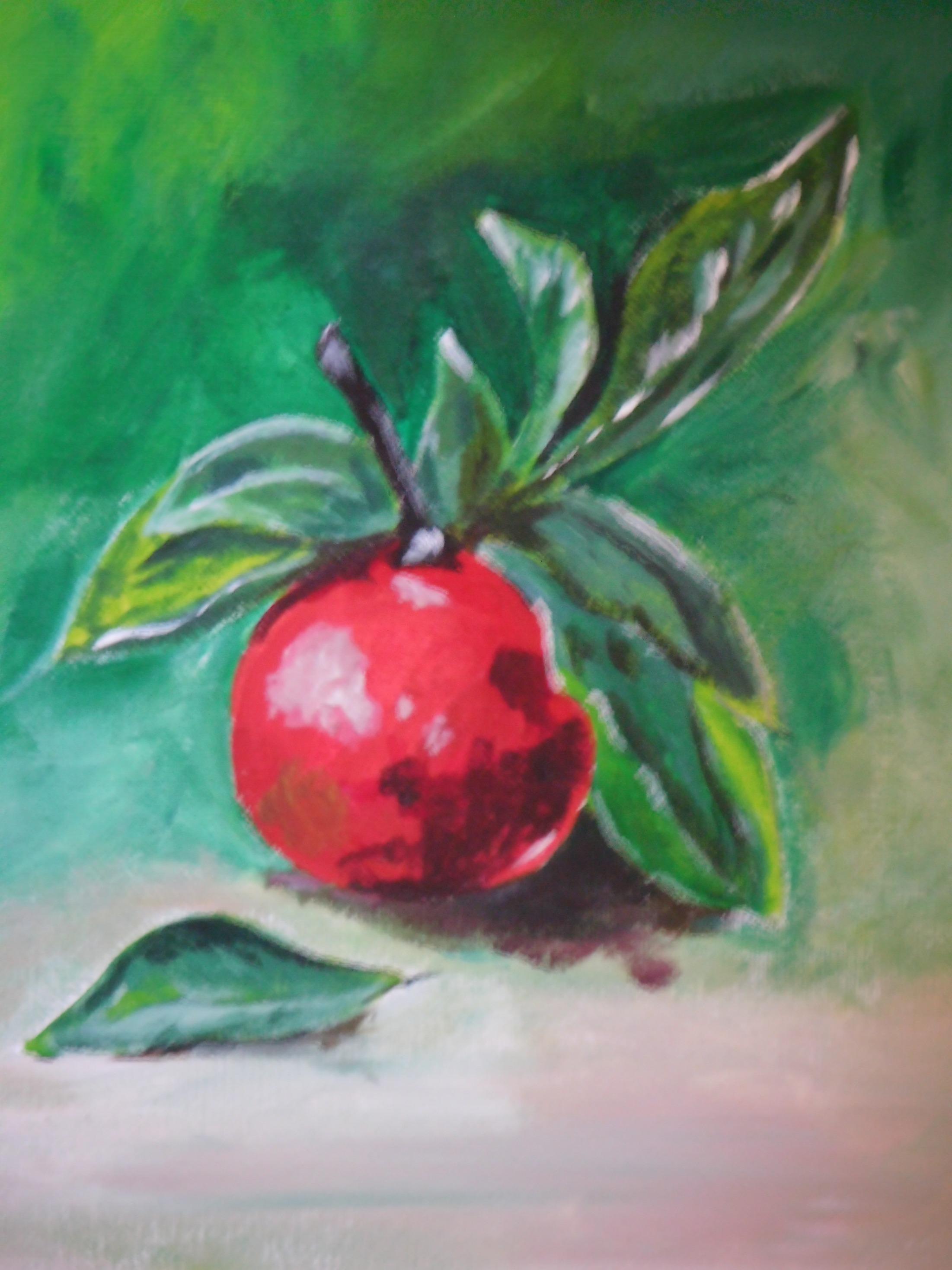 Eigen werk: Appel in acryl n.a.v  webinar Corrie Leushuis