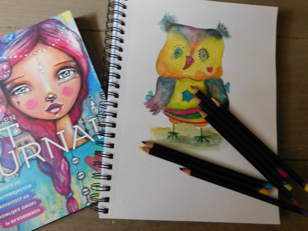 Eigen foto: Het boek, Maak een art journal van Tamara Laporte en een deel van een opdracht.
