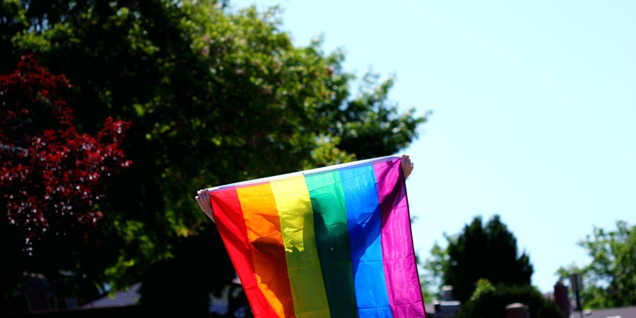 Vlag van LGBTQ+ gemeenschap