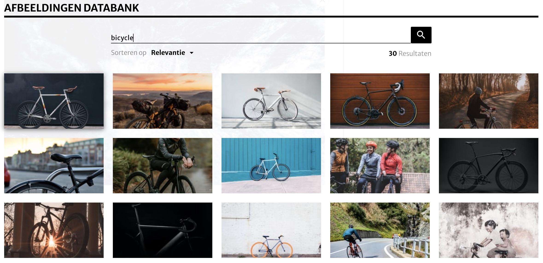 Scroll naar beneden om de afbeeldingen databank te zien. Hier kan je zoeken op afbeeldingen. Vul je zoekopdrachten in het Engels in, dan krijg je de meeste resultaten.
