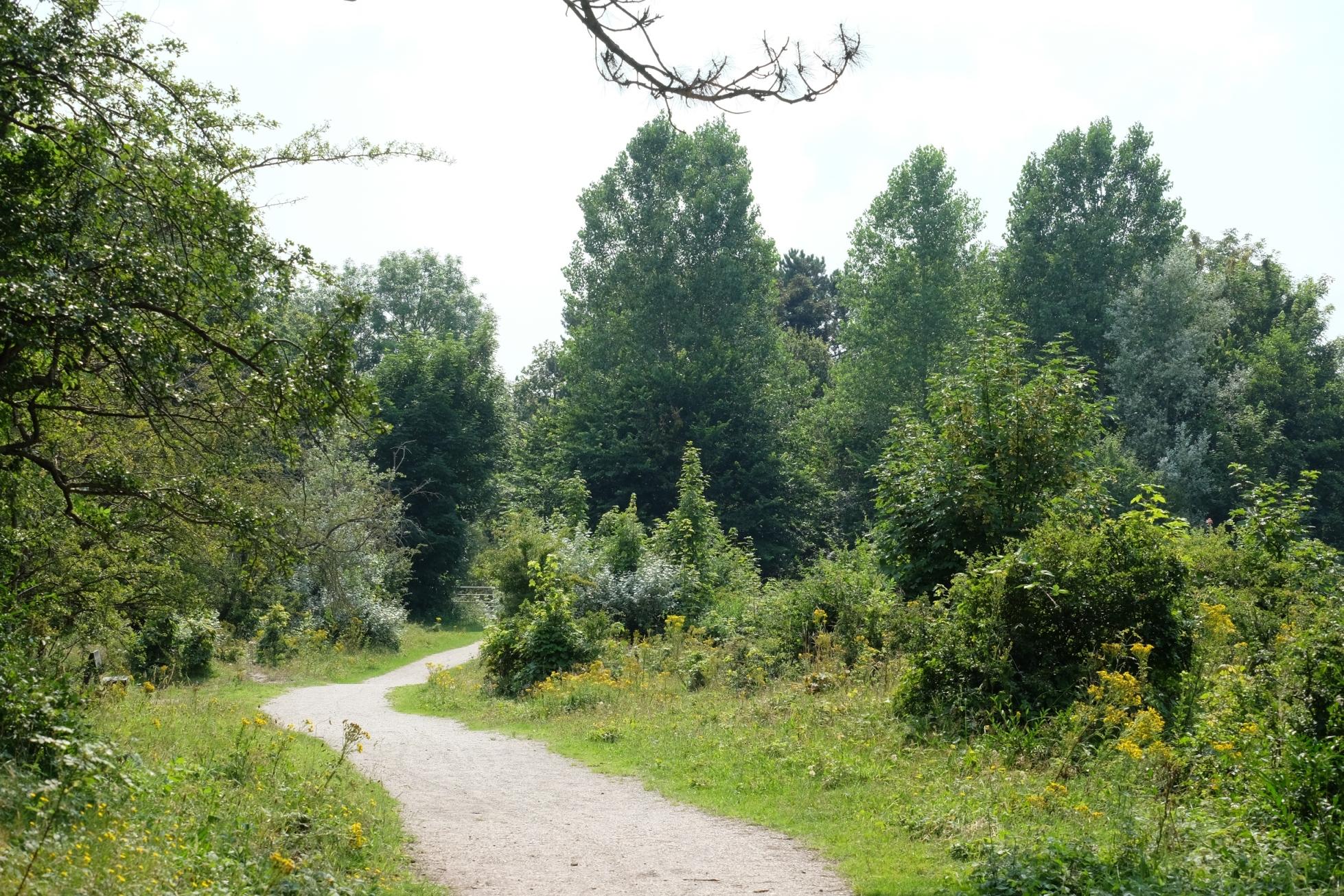 Tenellaplas Rolstoelroute - Elles van den Broek