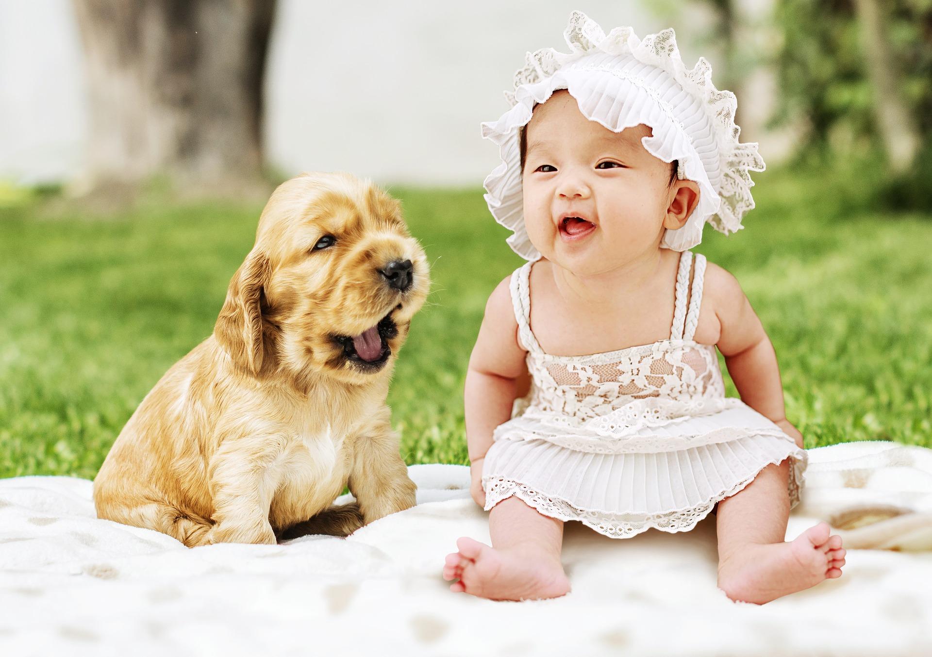 Kinderen & Huisdieren