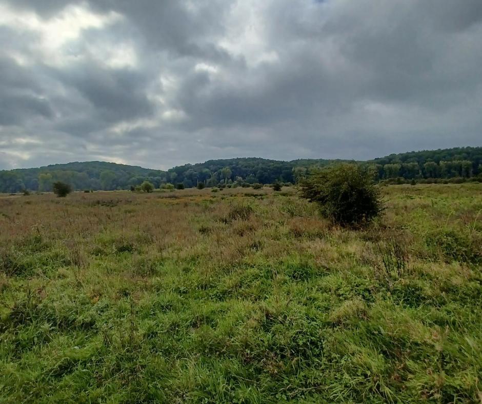 Een foto van een deel van het gebied in het natuurpark